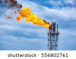 fire on flare stack at oil and... | Shutterstock . vector #556802761