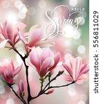 hello  spring. spring concept... | Shutterstock .eps vector #556811029