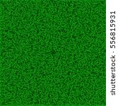 picture of grass lawn | Shutterstock .eps vector #556815931