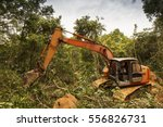 deforestation of rainforest.... | Shutterstock . vector #556826731