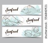 seafood design template ... | Shutterstock .eps vector #556840921
