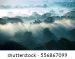 fog landscape    sunrise... | Shutterstock . vector #556867099