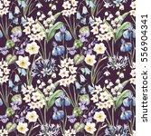 watercolor floral spring... | Shutterstock . vector #556904341