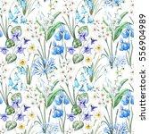watercolor floral spring... | Shutterstock . vector #556904989