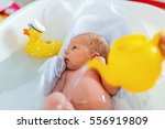cute adorable newborn baby... | Shutterstock . vector #556919809