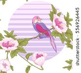 flowers and bird and sun.... | Shutterstock .eps vector #556926445