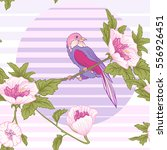 flowers and bird and sun.... | Shutterstock .eps vector #556926451