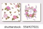 set of seamless patterns with... | Shutterstock .eps vector #556927021