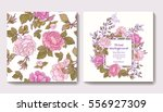 set of seamless patterns with... | Shutterstock .eps vector #556927309
