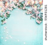 Stock photo beautiful spring nature background with lovely blossom petal and bokeh on turquoise blue 556931281
