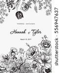 bouquet of flowers. floral... | Shutterstock .eps vector #556947637