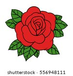 flower rose  red buds and green ... | Shutterstock .eps vector #556948111