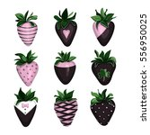 collection of strawberries in... | Shutterstock .eps vector #556950025