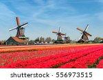 Landscape Of Netherlands...
