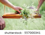 Girl Making Wildflower Bouquet...