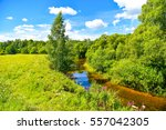 river landscape on rural nature ... | Shutterstock . vector #557042305