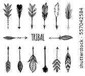 arrows in native american... | Shutterstock .eps vector #557042584