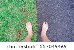 bare feet on the green grass... | Shutterstock . vector #557049469