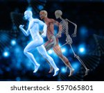 3d medical background with male ... | Shutterstock . vector #557065801