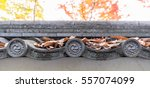 traditional clay roof of... | Shutterstock . vector #557074099