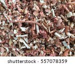 sawdust of dry alder wood with... | Shutterstock . vector #557078359