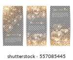 a set of vertical banners to... | Shutterstock .eps vector #557085445