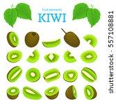 vector set of ripe tropical... | Shutterstock .eps vector #557108881