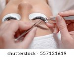 close up of professional... | Shutterstock . vector #557121619