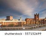 newcastle university skyline  ... | Shutterstock . vector #557152699