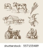 vector image of village and... | Shutterstock .eps vector #557155489