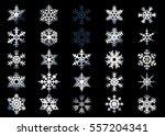 snowflake vector icon... | Shutterstock .eps vector #557204341