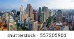sao paulo downtown panorama... | Shutterstock . vector #557205901