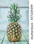 ripe pineapple on a wooden...   Shutterstock . vector #557239399