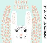 happy bunny face  rabbit head... | Shutterstock .eps vector #557245081