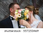 beautiful and young newlyweds... | Shutterstock . vector #557253469