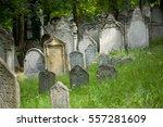 mikulov  czech republic   july... | Shutterstock . vector #557281609