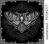 moth dead head. esoteric symbol.... | Shutterstock .eps vector #557293777