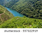 vineyards along sil river ... | Shutterstock . vector #557322919