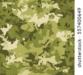 camouflage on a green background | Shutterstock .eps vector #557400649