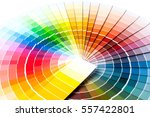 color palette  guide of paint... | Shutterstock . vector #557422801