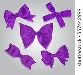 Vector Purple Satin Bows Set