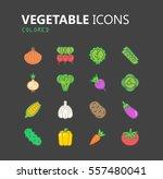 simple modern set of vegetable... | Shutterstock .eps vector #557480041