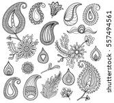 hand sketched vector vintage... | Shutterstock .eps vector #557494561