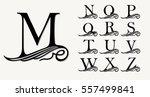 vintage set 2. calligraphic... | Shutterstock .eps vector #557499841