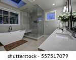 amazing gray master bathroom... | Shutterstock . vector #557517079