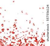love valentine's background... | Shutterstock .eps vector #557556124