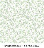 herbs seamless pattern. dill... | Shutterstock .eps vector #557566567