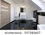modern design comfortable... | Shutterstock . vector #557583607