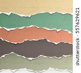 Design elements - multi colored torn paper