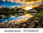 sunrise over the anahulu stream ... | Shutterstock . vector #557636419